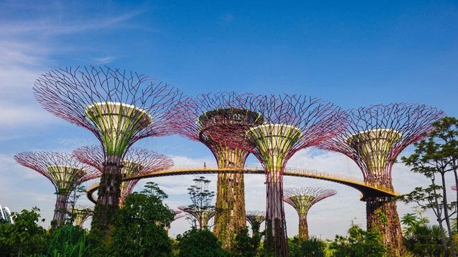 Bạn sẽ muốn đến Singapore ngay lập tức vì 5 điều này