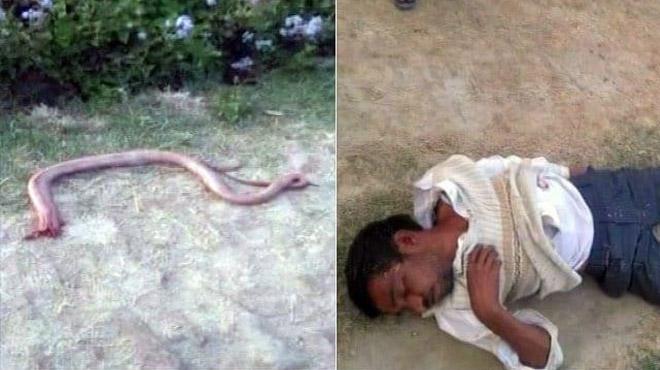 Người đàn ông Ấn Độ cắn chết rắn để trả thù