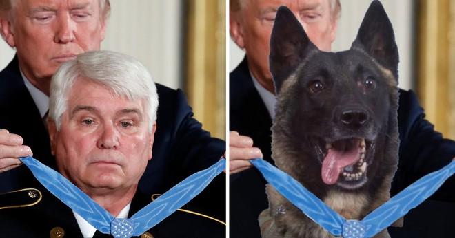 TT Trump đăng ảnh chế về chú chó giúp tiêu diệt trùm IS