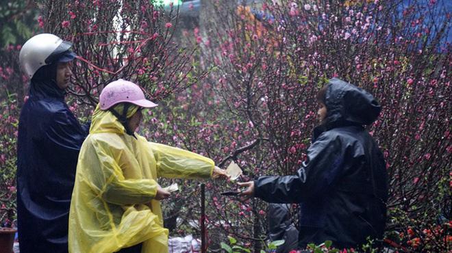 Miền Bắc đón Tết Nguyên đán trong mưa rét