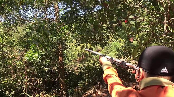 Thợ săn tử vong do súng cướp cò